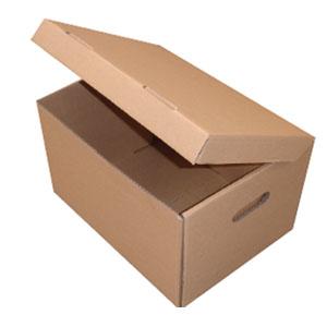 Archive Carton - Plain
